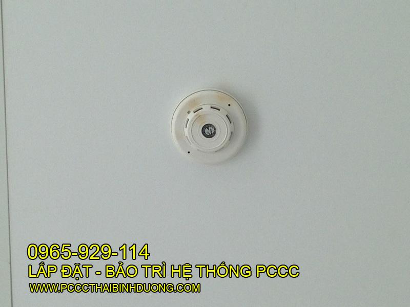 Đầu báo cháy khói - được lắp đặt dưới trần giả